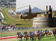 racing, horse racing, ipswich cup, ipswich turf club,
