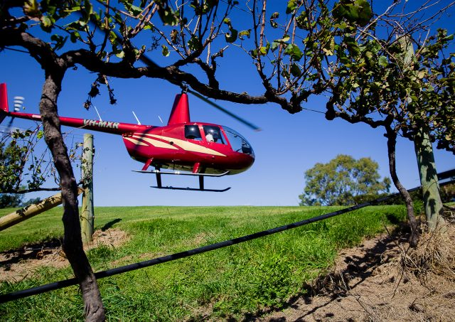 helicopter, wine tasting,