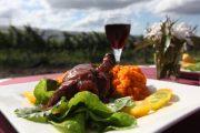 Heli wine tour, Heli wine lunch, kooralbyn Valley