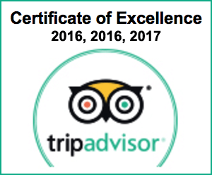 TripAdvisor Certificate of Excellence awarded to Pterodactyl Helicopters 2015, 2016 and 2017